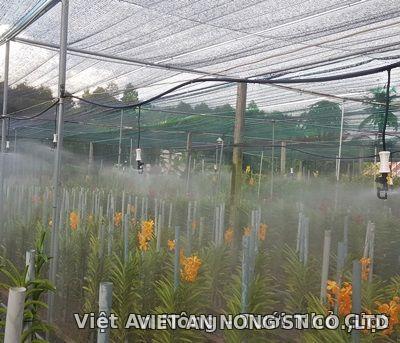 Béc tưới phun sương tỏa tròn Aquamic Automat Việt An Nông 2