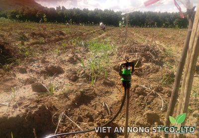 Béc tưới phun mưa bù áp AQ206PC việt an nông vn