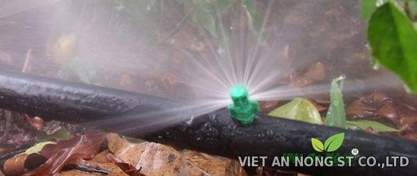 Béc nhộng phun gốc hồ tiêu, cà phê 180 độ - VAN 4180